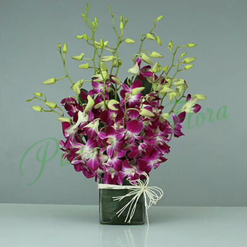 Purple Orchids Vase Arrangement by Way 2 Flowers