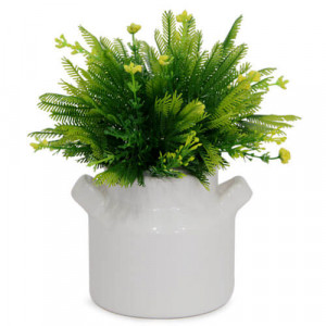 Beautiful Green Arrangement - Online Gifts