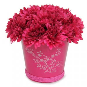 Beautiful Pink Arrangement - Online Gifts