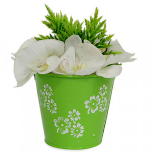Fresh Artificial Arrangement - Online Gifts