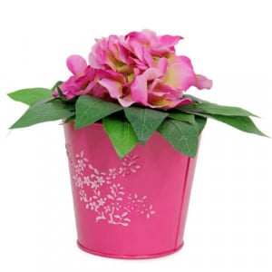 Striking Flower Arrangement - Online Gifts