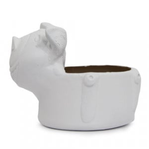 Lovely Pig Planter - Online Gifts