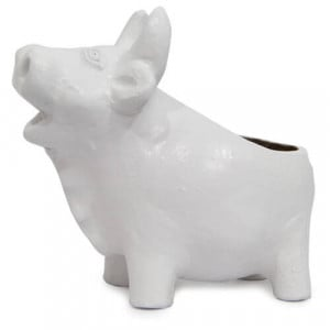 White Pig Planter - Online Gifts