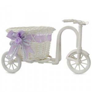 Tricycle Planter - Online Gifts