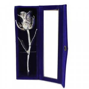 Silver Rose - Mothers Day Gifts Online