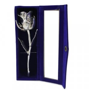 Silver Rose - Marriage Anniversary Gifts Online