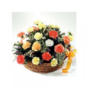A Bundle Of Happiness 20 Carnations - Send Carnations Flowers Online