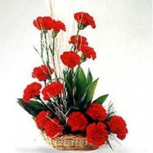 Romantic Affair 15 Red Carnations - Flower Basket Arrangements Online