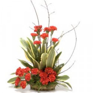 A Little Sunshine 20 Red Carnations - Send Carnations Flowers Online