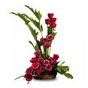 Silver Touch 20 Red Roses - Flower Basket Arrangements Online
