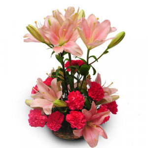 Perfect pink - Send Lilies Online India