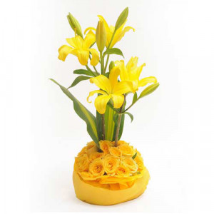Celebrate Love - Send Lilies Online India