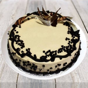 Choco Chip Cake - Send Eggless Cakes Online