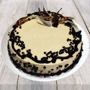 Choco Chip Cake - Kiss Day Gifts Online