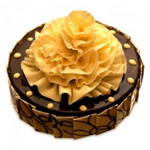 Flower on Chocolate Truffle Cake - Send Chocolate Truffle Cakes Online