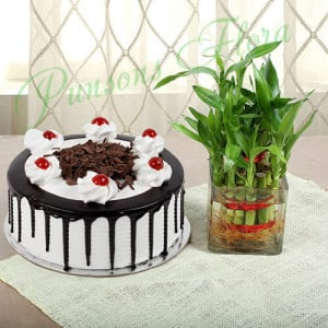 Blackforest Cake With Two Layer Bamboo - Birthday Cake and Flowers Delivery