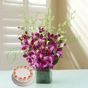 Exotica - Send Flowers to Jalandhar