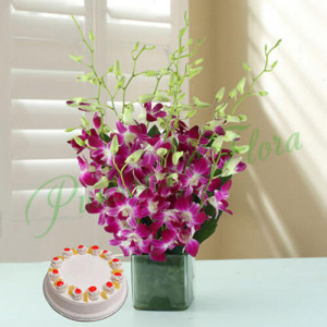 Exotica - Glass Vase Arrangements