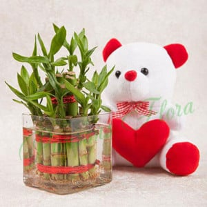 Luck N Cuteness Combo - Flowers with Soft Toys online