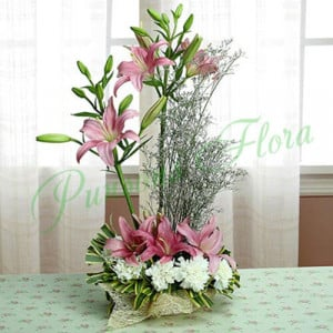 Token Of Admiration - Send Lilies Online India