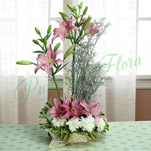 Token Of Admiration - Online Flowers Delivery in Zirakpur