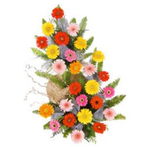 Basket Of Mix Gerberas - Mixed Flowers