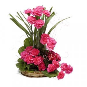 Sunshine 24 Pink Carnations - Flower Basket Arrangements Online
