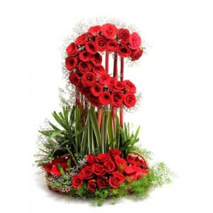 Love With Moon 50 Red Roses - Promise Day Gifts Online