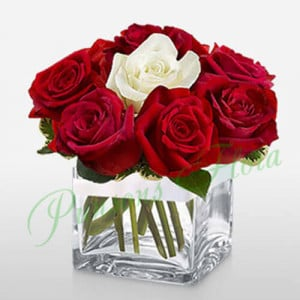 11 Red n 1 White rose in Cube Vase - Anniversary Flowers Online