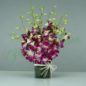 15 Purple Orchids Vase Arrangement - Birthday Gifts Online
