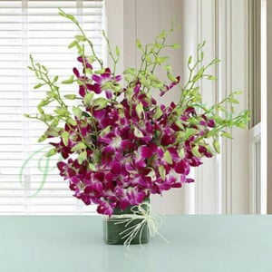 20 Purple Orchids Vase Arrangement - Send Diwali Flowers Online