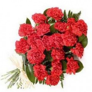 24 Red Carnation - Send Carnations Flowers Online