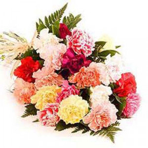 24 Mixed Carnation - Send Carnations Flowers Online