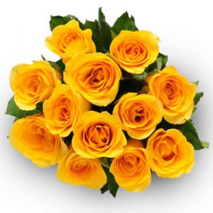 Eternal Purity 12 Yellow Roses - Send Midnight Delivery Gifts Online