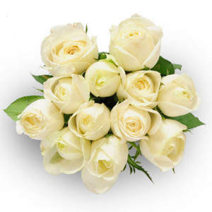 Always And Forever 12 White Roses - Default Category