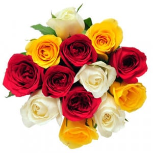 My Colorful Wishes - Send Flowers to Gondia Online