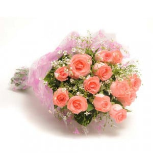 12 Baby Pink Roses - Online Flowers and Cake Delivery in Ahmedabad