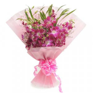 Robust Style 6 Purple Orchids - Send Midnight Delivery Gifts Online