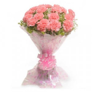 Carnival 15 Pink Carnations - Send Midnight Delivery Gifts Online