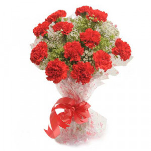 Delight 12 Red Carnations - Anniversary Gifts for Wife