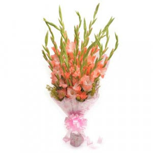 Lady Love 12 Orange Gladiolus - Flower delivery in Bangalore online