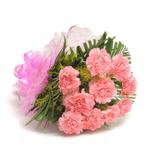 12 Pink Carnations - Send Valentine Gifts for Husband