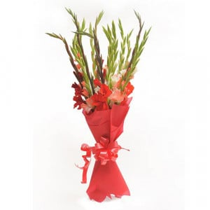 Colourful Glads - Send Midnight Delivery Gifts Online