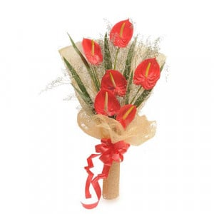 6 Red Authuriums - Marriage Anniversary Gifts Online