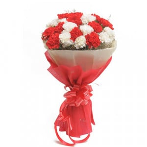 Red N White Carnations - Send Midnight Delivery Gifts Online
