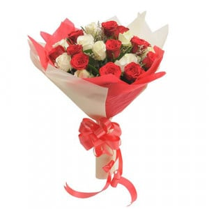 Two Dozen Roses - Chocolate Day Gifts