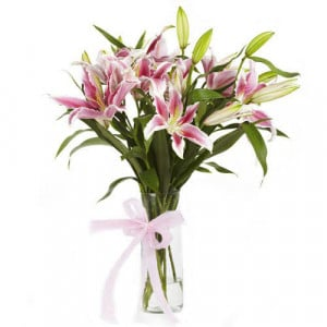 Blooming Beauty 6 Pink Lilies - Online Flowers and Cake Delivery in Hyderabad