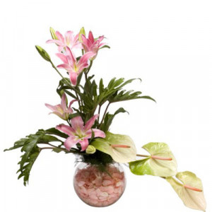 True Modesty - Glass Vase Arrangements