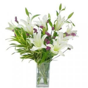Refined Beauty - Send Lilies Online India