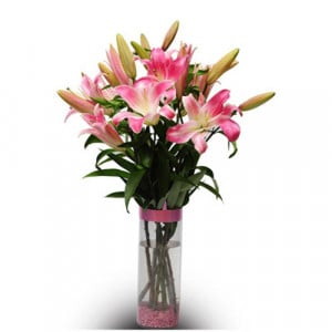 Best Greetings 6 Pink Lilies - Glass Vase Arrangements